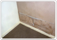 A detached bungalow with mould and evidence of damp