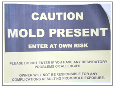 caution mold
